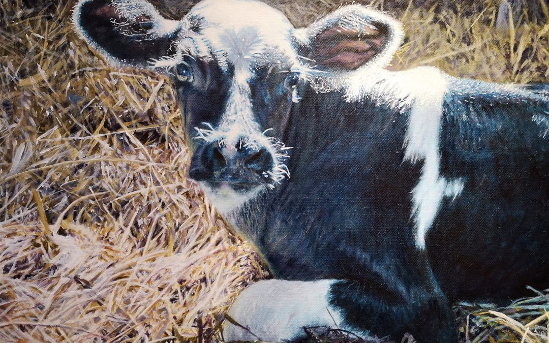 SEPTEMBER 23 – OCTOBER 28   Drawing and Painting with Bronwyn Gauley for Ages 9-12 – in studio
