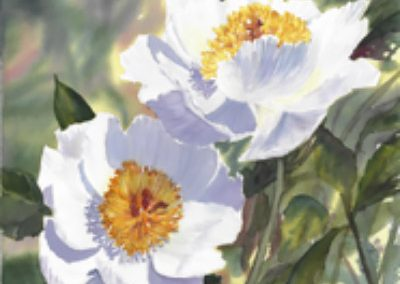 MARCH 3-24 | Beginner Watercolour Classes with Julieta Cortes