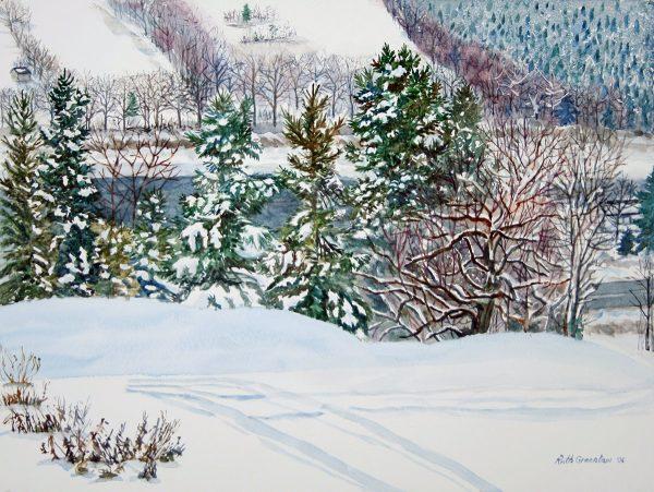 Heavy Snow in Nova Scotia