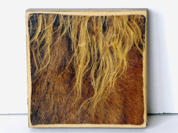 Wood Transfer Small – Horse Mane