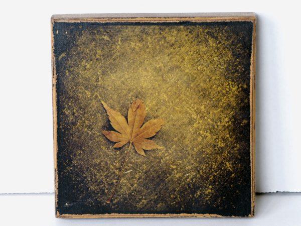 Wood Transfer Small – Maple Leaf
