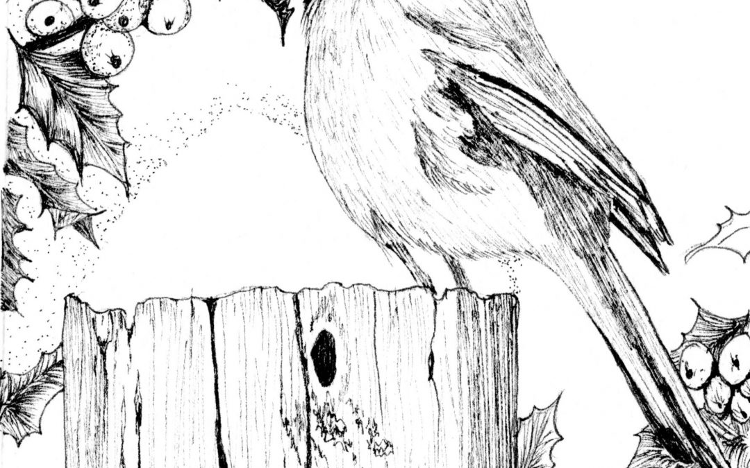 NOVEMBER 21 | Pen and Ink – Holiday Card Workshop with Dianne Darch – on Zoom